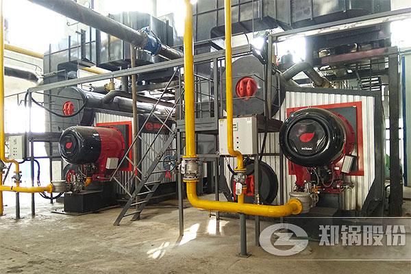 山西2台14MW(20吨)SZS燃气锅炉项目