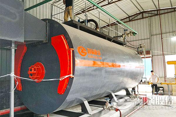 河南兴源建材厂6吨WNS卧式燃气锅炉项目